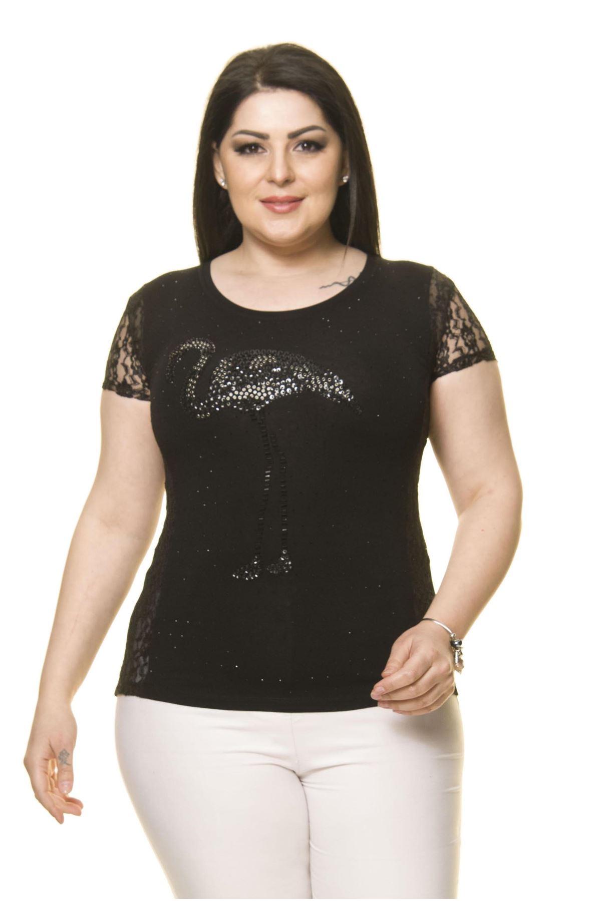 Kadın Büyük Beden Siyah Taş İşlemeli Flamingo Body 16E-70009